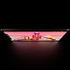 iPad Pro M1 11 inch (2021) 256GB Wifi – Hàng Chính Hãng