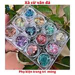 xa-cu-van-da-dinh-mong-set-12-hu-mau-p97501569.html?spid=97501679