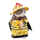Thời trang cho mèo