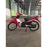 Xe 50cc