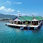 Biểu đồ lịch sử biến động giá bán Du lịch Ninh Thuận: Hang Rái - Vườn nho - Đảo Bình Hưng