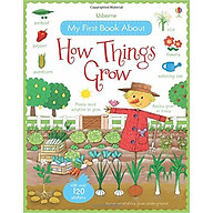 Usborne My First Book About How Things Grow thumbnail