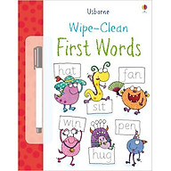 Usborne First Words thumbnail