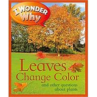 I Wonder Why Leaves Change Color thumbnail