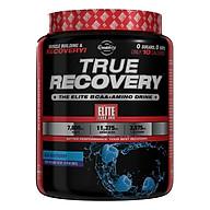 Sữa Tăng Sức Mạnh Và Sức Bền True Recovery Elite Labs SMEL655 (390g) thumbnail