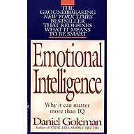 Emotional Intelligence Why It Can Matter More Than IQ thumbnail