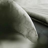Bộ 2 Vỏ Gối Ôm Lotus Hammock BC2-Hammock01 (35 x 111 cm) thumbnail