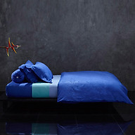 Vỏ Chăn Mền Cao Cấp Lotus Monaco Vista Blue DC-178-LI-C-M01 (178 x 228 cm) thumbnail
