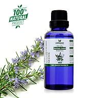 Combo tinh dầu hương thảo Lorganic (50ml) +tinh dầu hương thảo Lorganic treo xe hơi, tủ áo (10ml) Hương thơm đậm mùi thảo mộc Tinh dầu thiên nhiên nguyên chất xông phòng, thư giãn tinh thần, xua đuổi muỗi và khử mùi hiệu quả. thumbnail