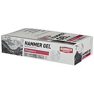 Hộp 24 gói Gel uống bổ sung năng lượng - Hammer Nutrition Hammer Gel vị dâu rừng HM601H thumbnail