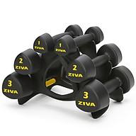 Bộ 3 Cặp Tạ Tay Tam Giác Kèm Giá Đỡ ZIVA Studio Tribells 12 kg Set (1, 2, 3 kg Pairs) with Stand thumbnail