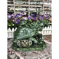 Tượng Long Quy ( Rùa đầu rồng ) cõng con phong thủy đá ngọc Ấn Độ - Dài 22 cm thumbnail