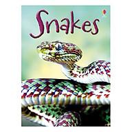 Usborne Snakes thumbnail