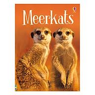 Usborne Meerkats thumbnail