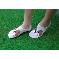 Tất vớ Nữ cao cấp, nhập khẩu Hàn Quốc thương hiệu KIKIYA SOCKS - Happy Puppy W-N-011 thumbnail