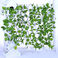 Combo 5 dây lá trầu bà giả - lá nhân tạo trang trí không gian xanh thumbnail