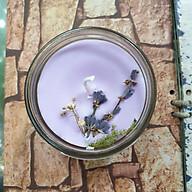Nến thơm tinh dầu Lavender (Oải Hương) 100g - Giúp thơm phòng, thư giãn giảm stress với thành phần hoàn toàn tự nhiên thumbnail