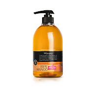 Gel rửa tay hương xoài Farcom Arlem liquid hand soap Mango 500ml thumbnail