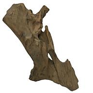 Gỗ lũa ngọc am tự nhiên phong thủy (Ma 30 Cao 36cmx26cmx1,7kg) thumbnail