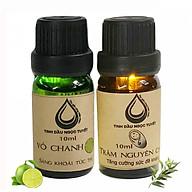 Bộ tinh dầu lọc không khí 10mlx2 (Tràm, vỏ chanh) Ngọc Tuyết thumbnail