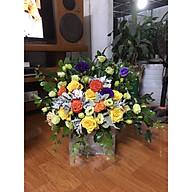 Gio hoa tươi thumbnail