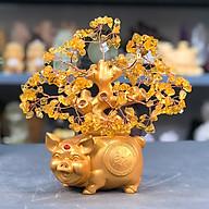 Cây tài lộc đá Thạch Anh nhiều màu đế Heo Vàng Thần Tài - Roxi thumbnail