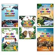 Sách - Từ Điển Bằng Hình Thế Giới Động Vật - Dưới Nước - Loài Chim - Côn Trùng Và Bò Sát - Khủng Long (Bộ 5 Cuốn) thumbnail