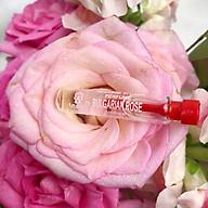Nước hoa mini tinh dầu hoa hồng Bulgaria thương hiệu Lema 2,1ml mùi hương hồng tươi nhẹ nhàng quyến rũ thumbnail