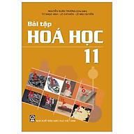 Bài Tập Hoá Học 11 (T9) thumbnail