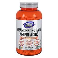 Branched Chain Amino Acids (BCAA) Bổ Sung Đạm & 20 Axit Amin Giúp Phát Triển, Khôi Phục và Tái Tạo Tế Bào Cơ Hỗ Trợ Luyện Tập (240 Viên) thumbnail