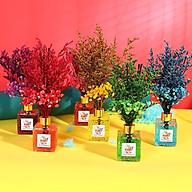 Lọ tinh dầu khuếch tán hương nước hoa để bàn kèm hoa khô (1 lọ) - màu ngẫu nhiên thumbnail