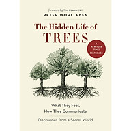 The Hidden Life of Trees What They Feel, How They Communicate thumbnail