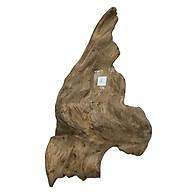 Gỗ lũa ngọc am tự nhiên phong thủy Mã 08 (33cm x 29cm) thumbnail