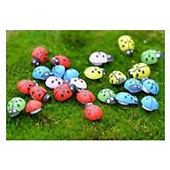 10 Con Bọ Cánh Cứng Trang Trí Cây Mini ( Giao màu ngẫu nhiên ) thumbnail