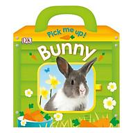 Pick Me Up Bunny thumbnail
