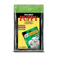 Thức ăn Hàn Quốc cho chó con Probest Puppy 500g thumbnail