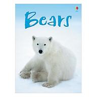 Usborne Bears thumbnail