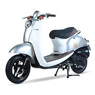 Xe ga 50cc Scoopy màu bạc thumbnail