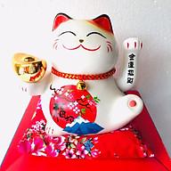 Mèo Thần Tài, Mèo May Mắn ( ngẫu nhiên) thumbnail