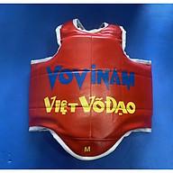 Giáp Đấu dùng cho Vovinam Loại tốt 2 mặt Xanh Đỏ thumbnail