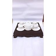 Combo khay trà nhựa giả cổ Song Long, bộ ấm chén cao cấp Bát Tràng- hoa văn ngẫu nghiên thumbnail