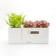 Bộ 3 chậu trồng cây thông minh tích hợp đồng hồ sinh học LEGROW - Magical Plant Clock thumbnail