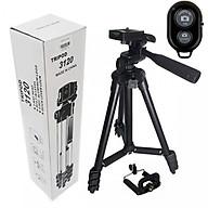 Combo Bộ Giá đỡ chụp hình cho điện thoại, máy ảnh Tripod 3120 và Remote bluetooth thumbnail