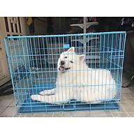 Chuồng cho chó poodle Xudapet - giao màu ngẫu nhiên - XDP01CC2 thumbnail
