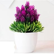 Chậu cây giả, chậu cỏ có hoa màu tím thumbnail