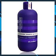 Dầu gội khử ánh vàng cho tóc trắng bạch kim Elgon Silver Colorcare Silver shampoo 300ml thumbnail