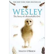 Wesley The Story of a Remarkable Owl thumbnail