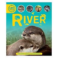 Life Cycles River thumbnail