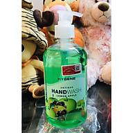 NƯỚC RỬA TAY LAFFAIR HAND WASH - HƯƠNG TÁO MALAYSIA ( thể tích thực 500ml ) thumbnail