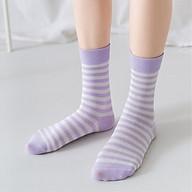 Set 5 Đôi Tất Dài Kẻ Sọc Tone Tím Lavender Lãng Mạn Mang Hơi Thở Mùa Hè Nước Pháp TN64 thumbnail